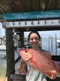 Pretty fish on July 4th