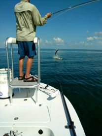 Tarpon trip with Capt Cleve