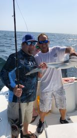 Half day shark fishing with Captain Chris
