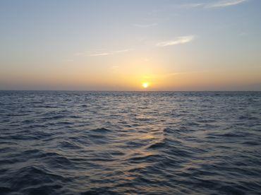 Morning fishing trip w\/ Capt. Ryan Falls!