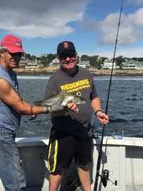 Half day Striped Bass Fishing with Captain Mike