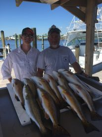 Great half day with Capt Mike