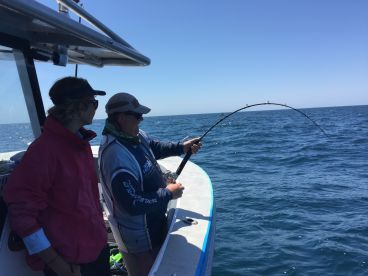 Day out sailfish and read bottom fishing
