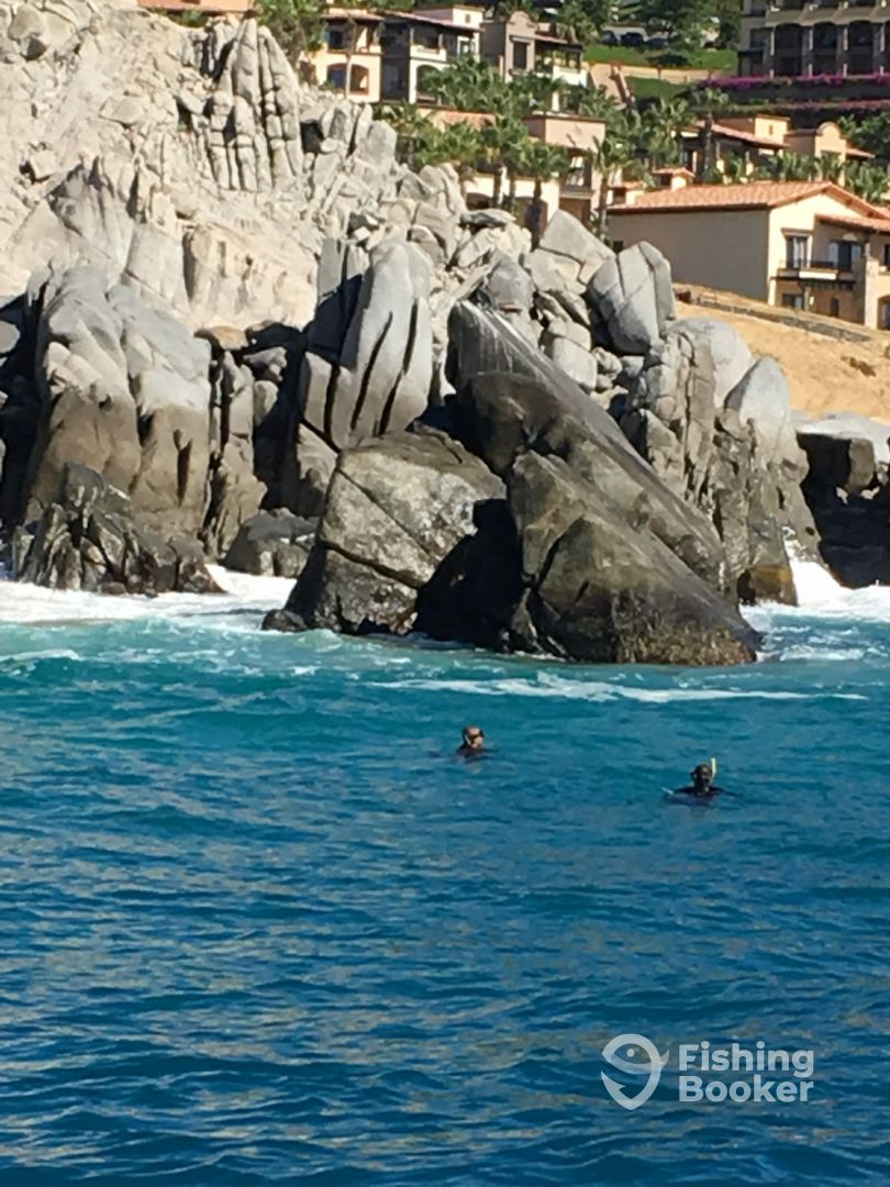 I just found Spearfishing Baja on FishingBooker