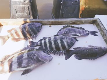 Catching convicts..good eats!